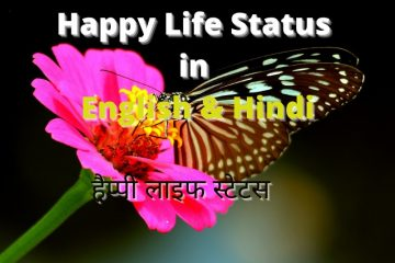 happy life status in english